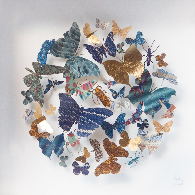 HELEN WARD: PAPER ENTOMOLOGY